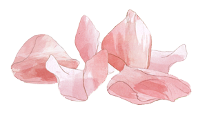 ingredient_rose_petals